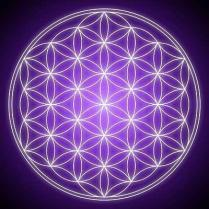 Flower of Life - Floarea Vietii