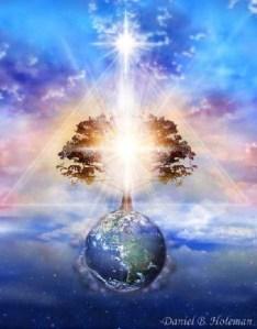 TreeOfLight-1-DanielBHoleman-MED1