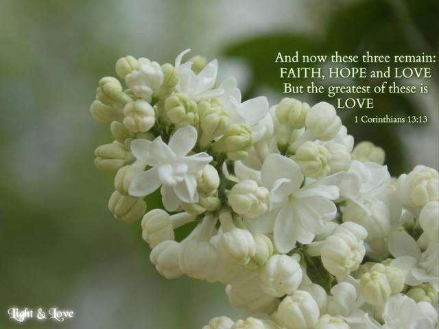Light-Love