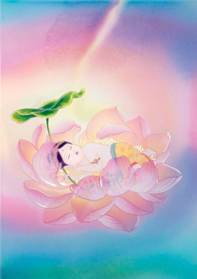 Guan Yin Baby Lotus