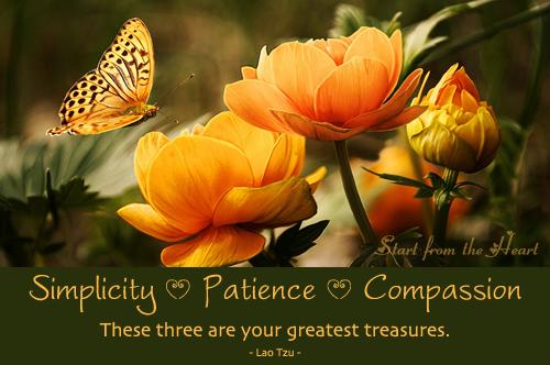 Simplitate - Îngăduință - Compasiune