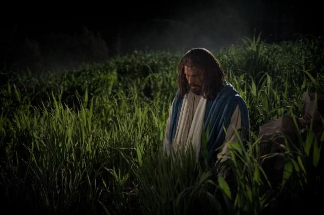 Iisus în Grădina Ghetsimani