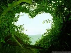 Portalul Inimii