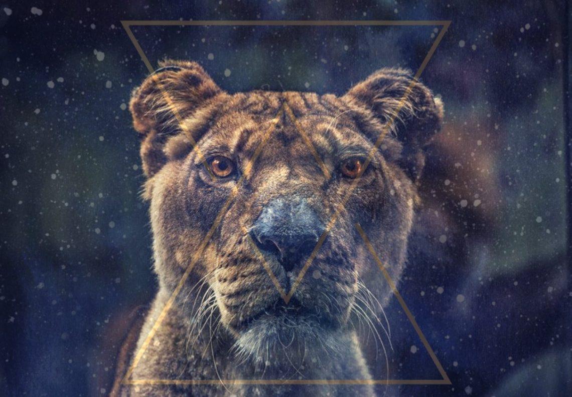 Ritual Poarta Leului